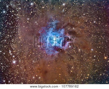 NGC 7023 Iris Nebula