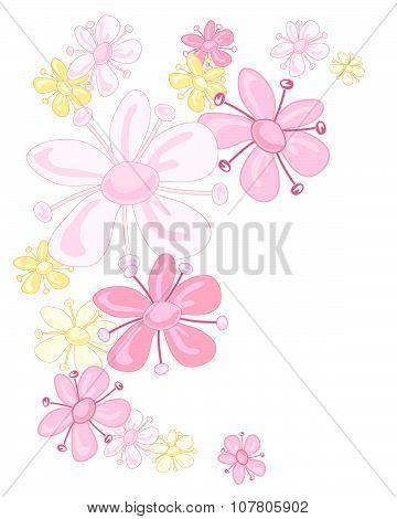 Pink Elderflower
