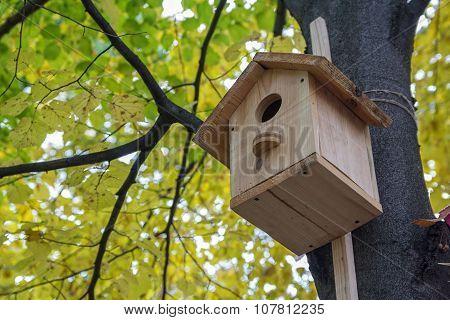 Wooden Birdhouse On The Avenue Autumn Park