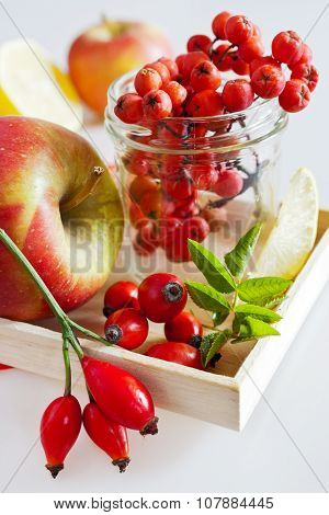 Autumnal Berries - Rosehip, Rowan And Apple