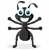 vector illustration of a cute little black ant. No gradient. poster