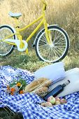 Old yellow bicycle and picnic snack on checkered blanket on grass in park poster