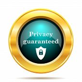 Privacy guaranteed icon. Internet button on white background. poster
