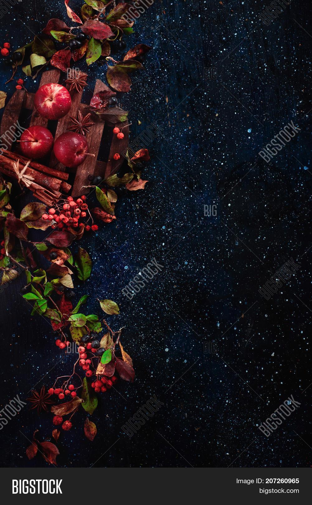 Dark Floral Background Image Photo Free Trial Bigstock