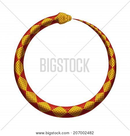 Ouroboros sign. The Snake bites it's tail. Vector realistic illustration isolated on a white background.