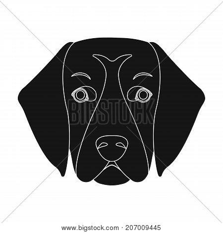 A dog breed, a golden retriever.Muzzle of the Golden Retriever single icon in black style vector symbol stock illustration .