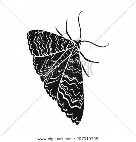 Moth, night butterfly. Insect pest moth single icon in black style vector symbol stock isometric illustration .