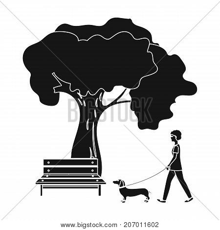 Tree and bench, woman walks a pet in the park. Pet, Dog care single icon in black style vector symbol stock illustration .