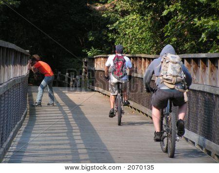 Young Men On A Wooden Bridge