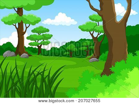 Vector cartoon illustration of dense forest background