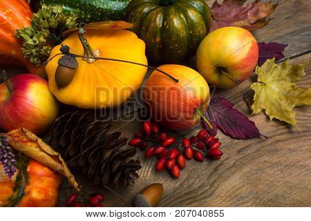 Harvest Concept With Yellow Squash, Fir Cone, Barberry