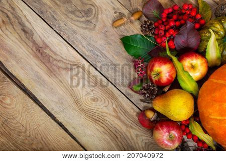Thanksgiving Background With Pumpkin, Apples, Pear, Copy Space