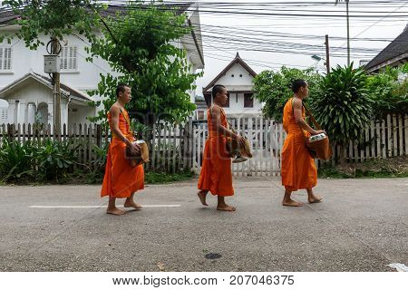 Novice Buddhist Monks Collect Alms In Luang Prabang, Laos