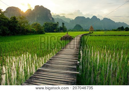 Sunset over green rice fields and mountains in Vang Vieng Laos