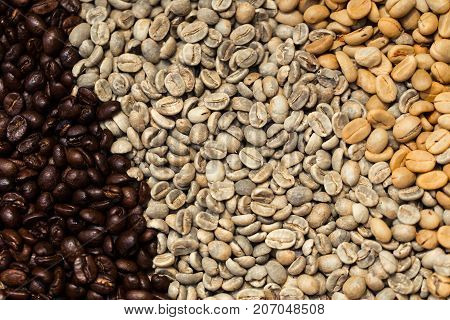 Various Type Of Arabica Coffee Been Roasted Multiple Colors And Stage Of Roast Timing