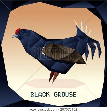 Vector image of the Origami Black Grouse