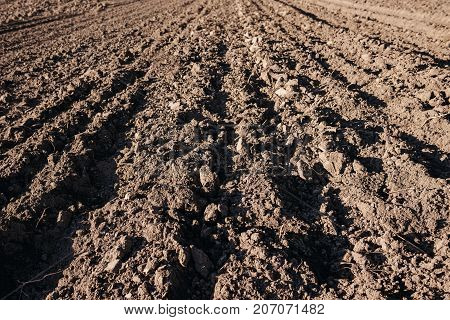 Texture Of Closed-up Brown Farm Soil With Breasts Of Earth