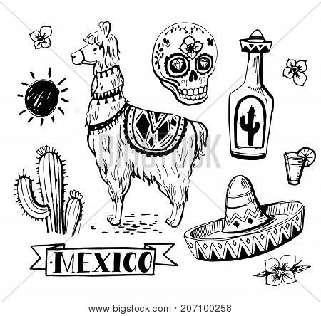 Set of Mexican objects: sun, cactus, llama, sombrero, tequila, pepper, sugar skull, flowers. Hand drawn illustration converted to vector.