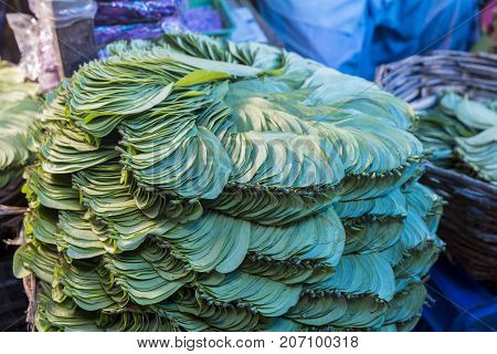 Betel leaf stack in an Indian market. Prepared with some more ingredients inside betel leafs are used as local desserts. People also get addicted to it.