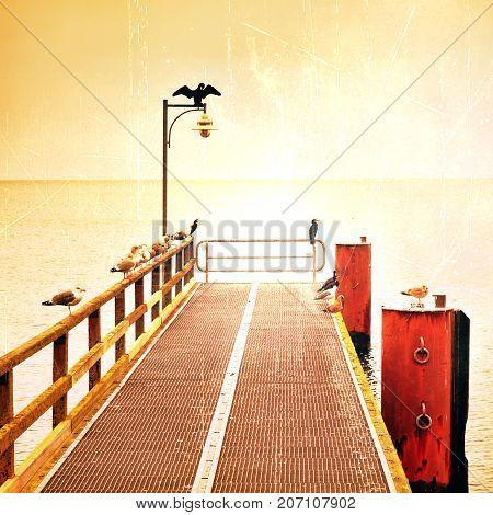 Empty Pier In Harbor. Steel Grate Board. Black Cormorant Sit On Lamp.  Autumn Mist On Pier Above Sea