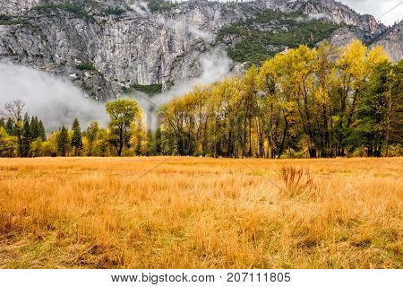 Meadow in Yosemite National Park Valley at cloudy autumn morning. Low clouds lay in the valley. California, USA.