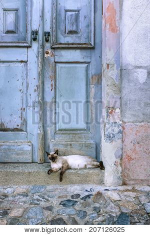Detail of old and textured blue wooden door with a sleepy cat on the doorstep