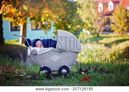 Little Newborn Baby Boy, Sleeping In Old Retro Stroller In Forest