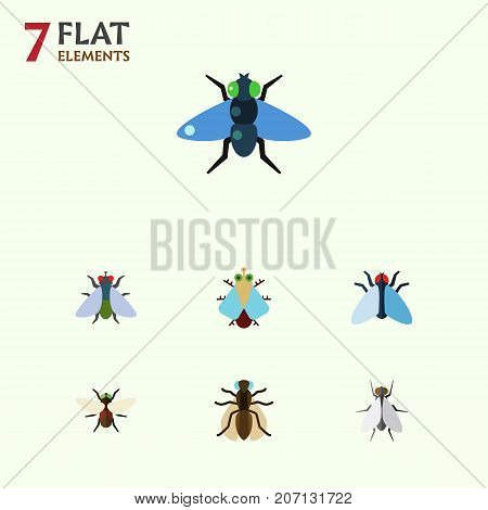 Flat Icon Housefly Set Of Housefly, Mosquito, Dung And Other Vector Objects