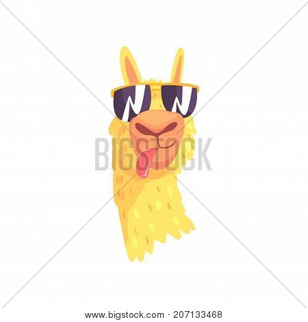 Funny llama character in sunglasses, cute alpaca animal cartoon vector Illustration on a white background