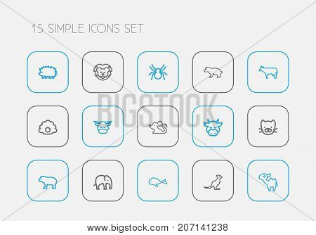 Set Of 15 Editable Zoology Outline Icons. Includes Symbols Such As Panda, Kitty, Dromedary