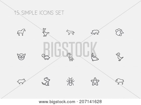 Set Of 15 Editable Animal Outline Icons. Includes Symbols Such As Spider, Rhinoceros, Quack And More