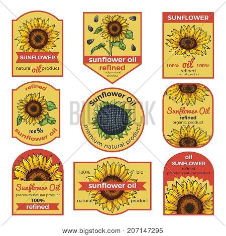Labels for sunflower oil. Vector illustration with place for your text. Oil sunflower banner logo for bottle, natural refined oil