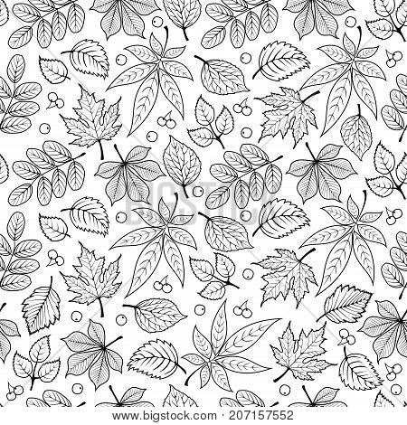 Seamless pattern with autumn leaves. Line art silhouette hand drawn art. Vector illustration.