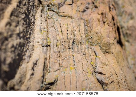 Sedimentary rock. Structure of natural stone. Background. Shallow depth of field. Focus on the center.