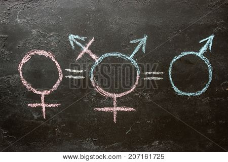 Gender Symbols And The Equal Sign Of The Concept Of Equality Of The Sexes