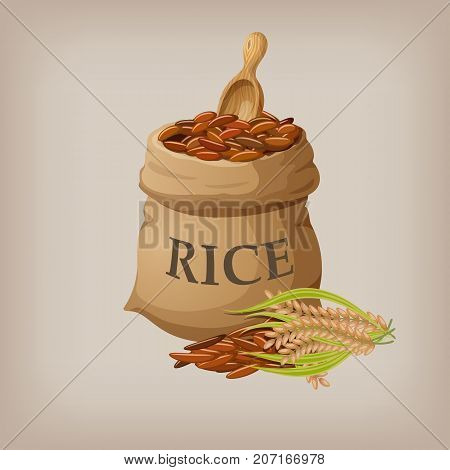 Brown natural long rice in small burlap sack. Vector illustration EPS10