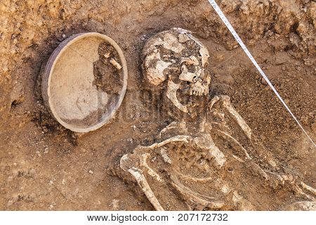 Archaeological excavations. research on human burial skeleton skull inventory. Scale burial measurement