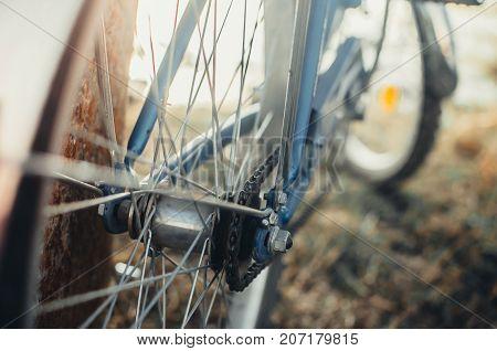 Rear Sprocket On The Bike Large