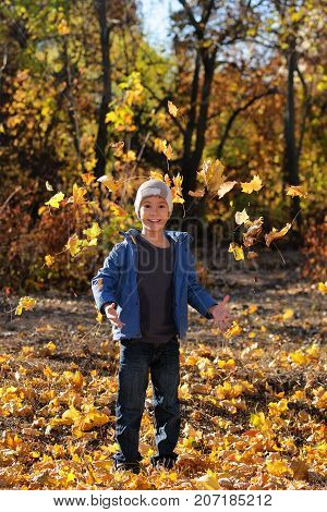 Cute boy in autumn park playing with leaves