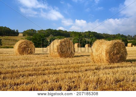 Hay bales on field under blue sky