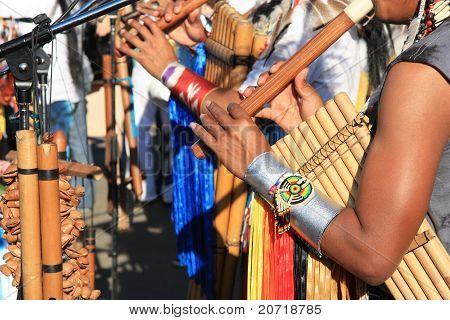 Música nativa de América del sur