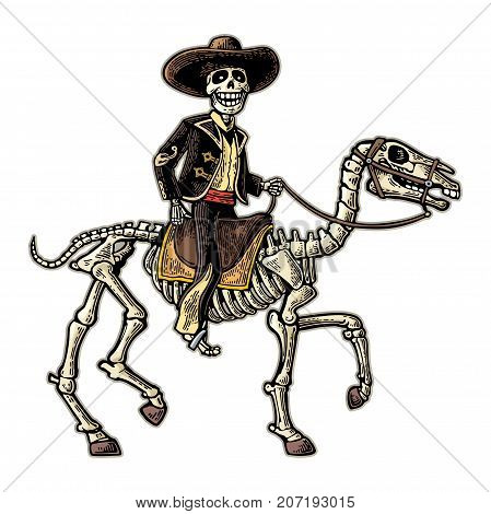 The rider in the Mexican man national costumes galloping on skeleton horse. Day of the Dead, Dia de los Muertos. Vector hand drawn color vintage engraving isolated on white background for poster