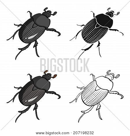 Beetle is a coleopterous insect.Arthropods insect, beetle single icon in cartoon style vector symbol stock isometric illustration .