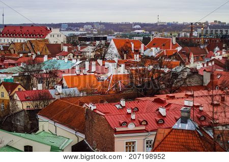 The roofs of the old town of Tallinn