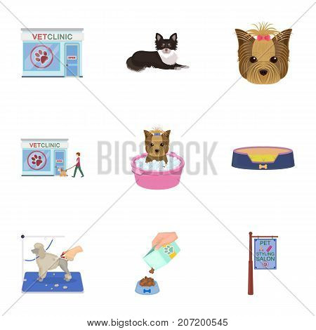 Walking with a dog, a vet clinic, a dog haircut, a puppy bathing, feeding a pet. Vet clinic and pet care set collection icons in cartoon style vector symbol stock illustration .
