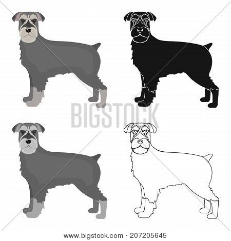 Terrier, single icon in cartoon style.Dog, vector symbol stock illustration .