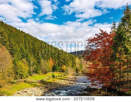 Mountain River On Fine Autumn Day