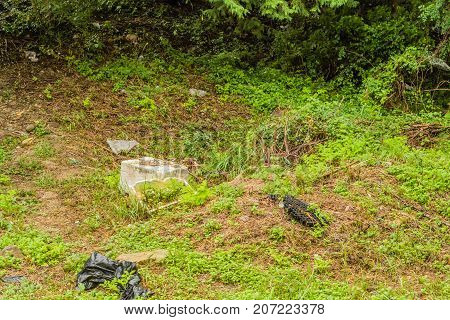 Styrofoam Container And Other Debris On The Ground