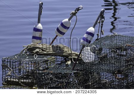 buoys and lobster traps sitting on the dock
