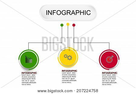 business info graphic template Vector illustration  graphic on background